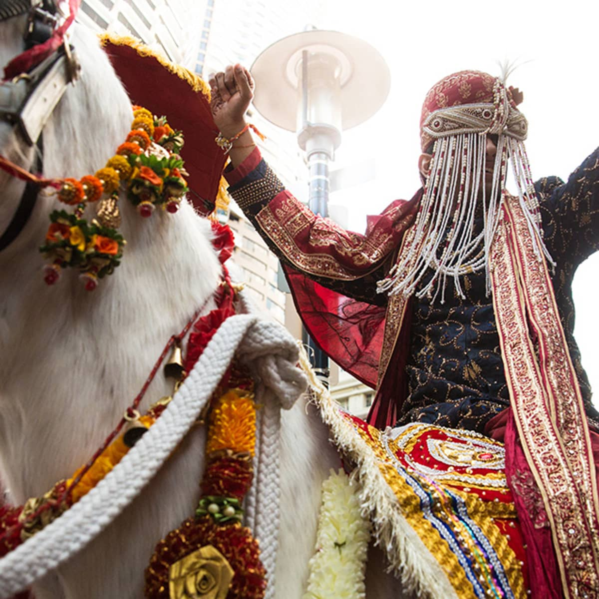 Image result for groom sit at horse and dance