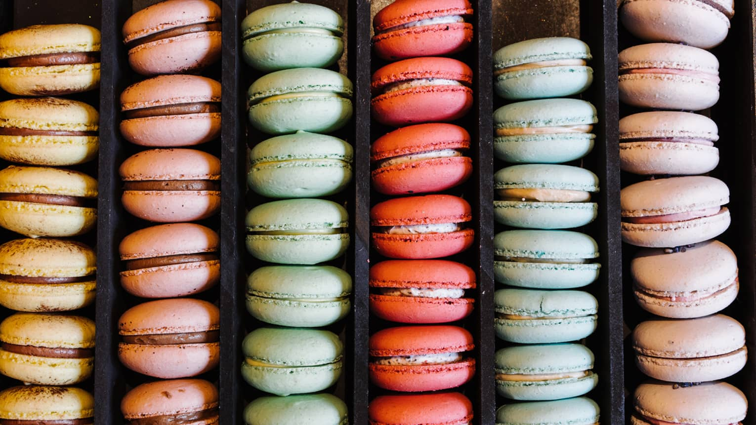 Rows of colourful macaron desserts