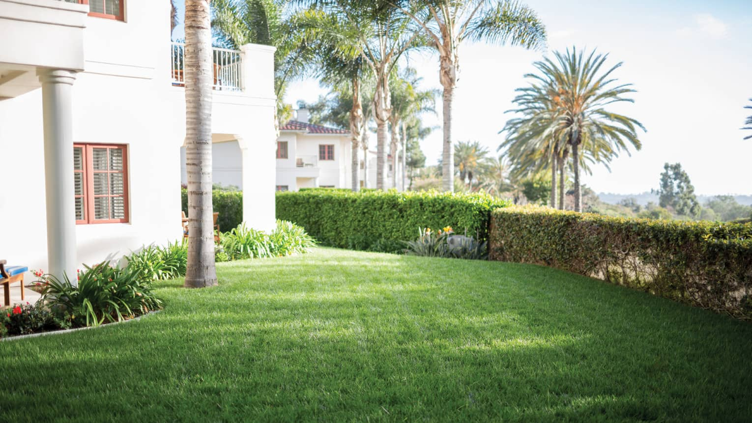 Lush green lawn in front of hotel, surrounded by landscaped bushes, plants and palm trees