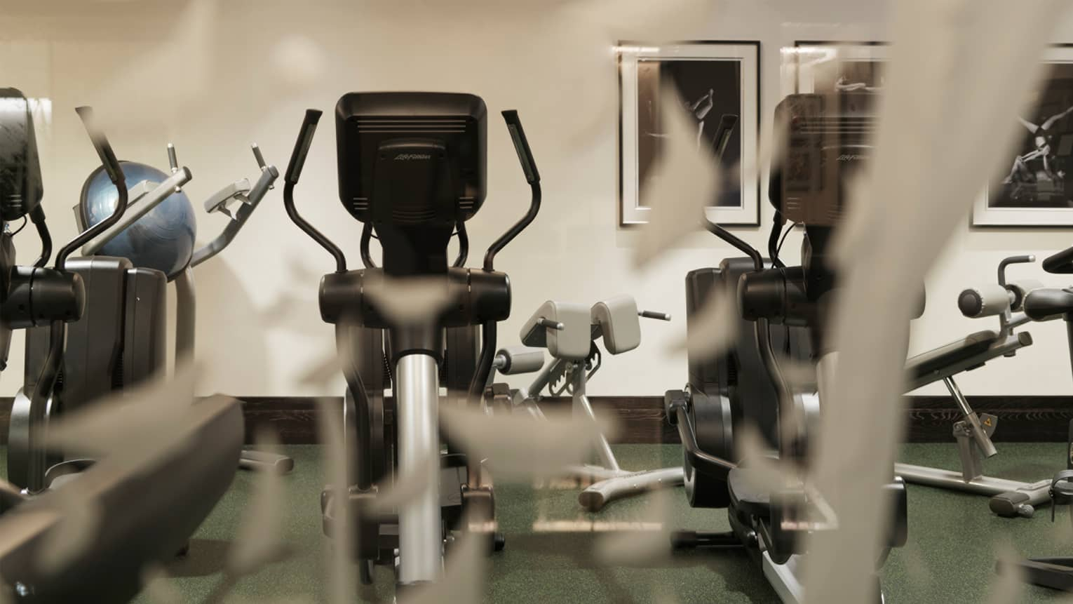 Cardio elliptical machines in workout room