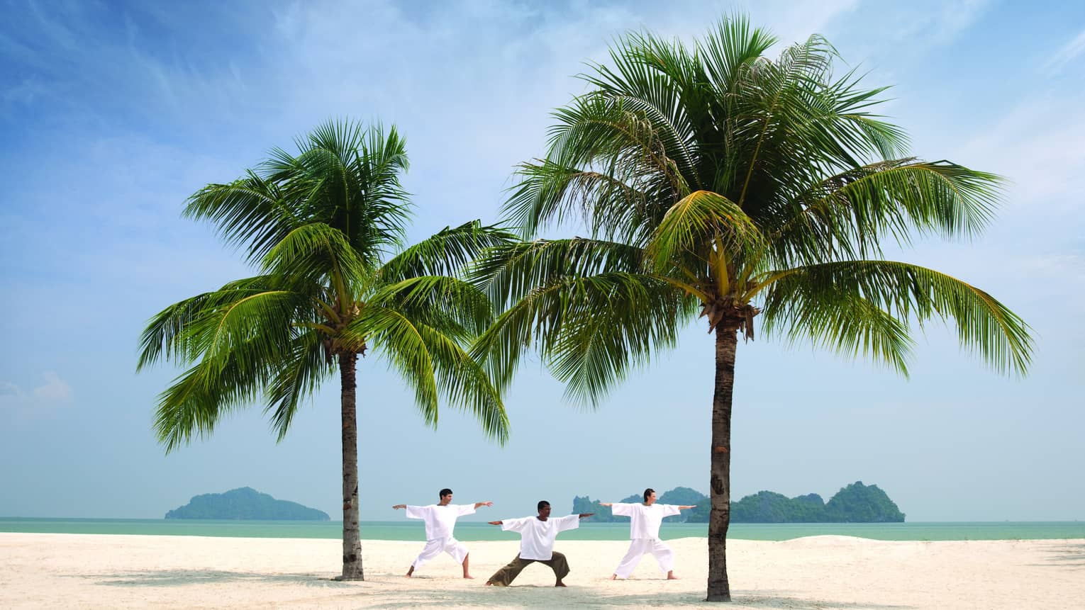 Three people stretch, balance in yoga poses between two large palms on beach