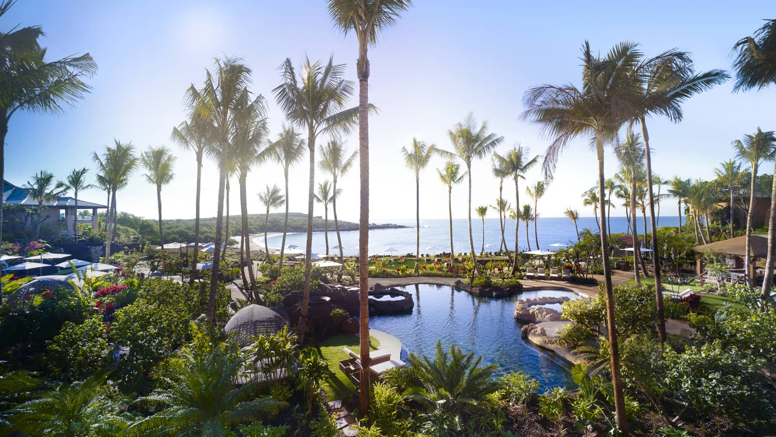 View over Four Seasons Resort Hawaii, Lanai outdoor swimming pools, palm trees by ocean