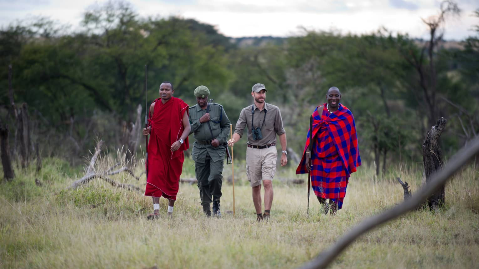 Resident naturalists and Masai guides with walking sticks trek through grass