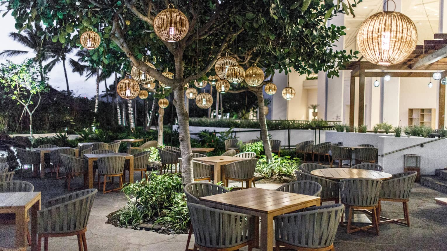 Noe restaurant patio with dining tables, chairs under round rattan lanterns from trees
