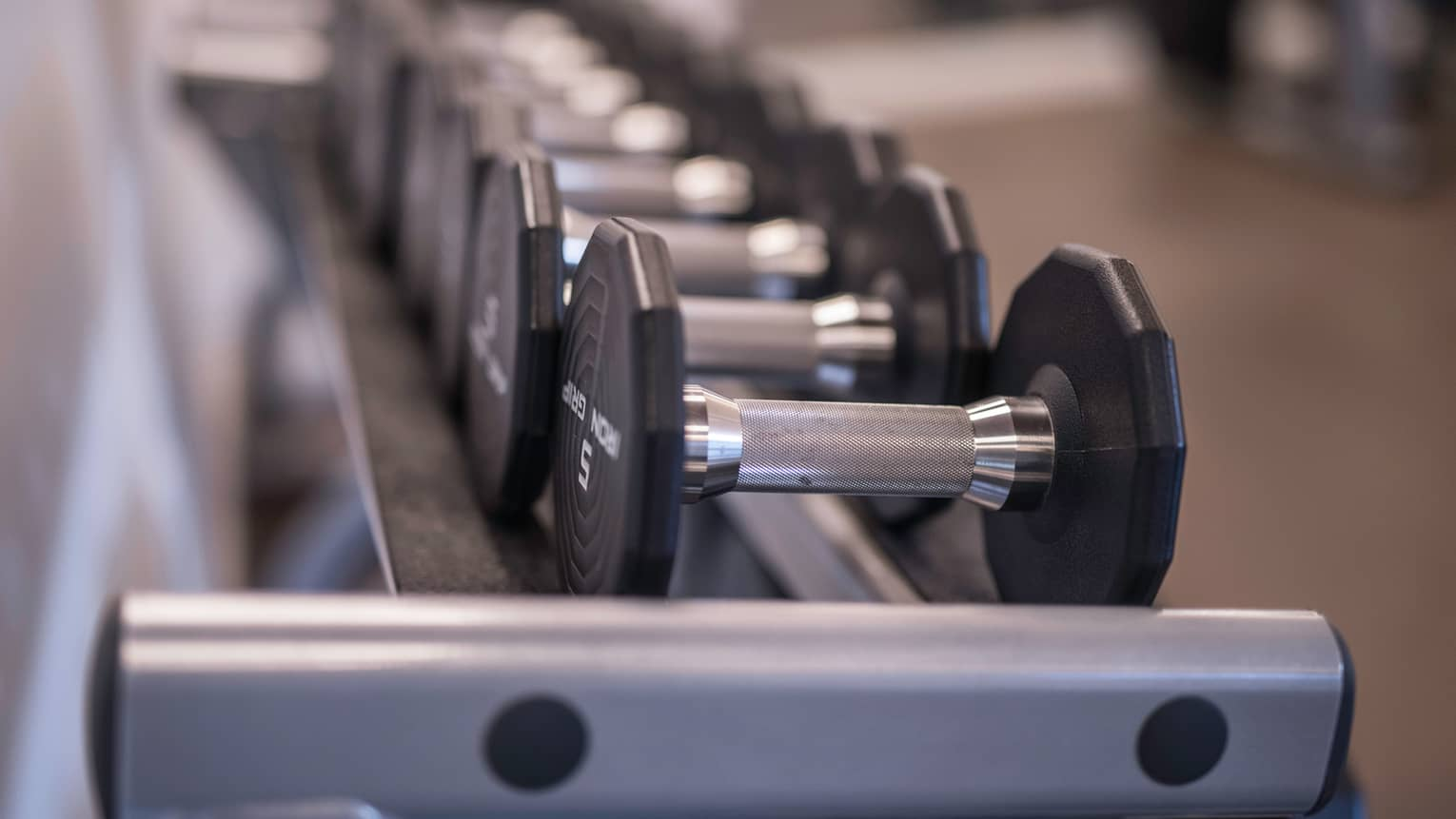 Close-up of hand weights on rack in Fitness Centre