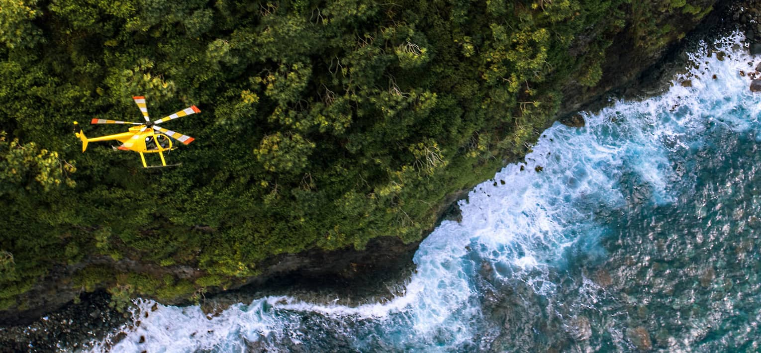 Aerial view of yellow Operation Protect Maui helicopter above green trees and ocean