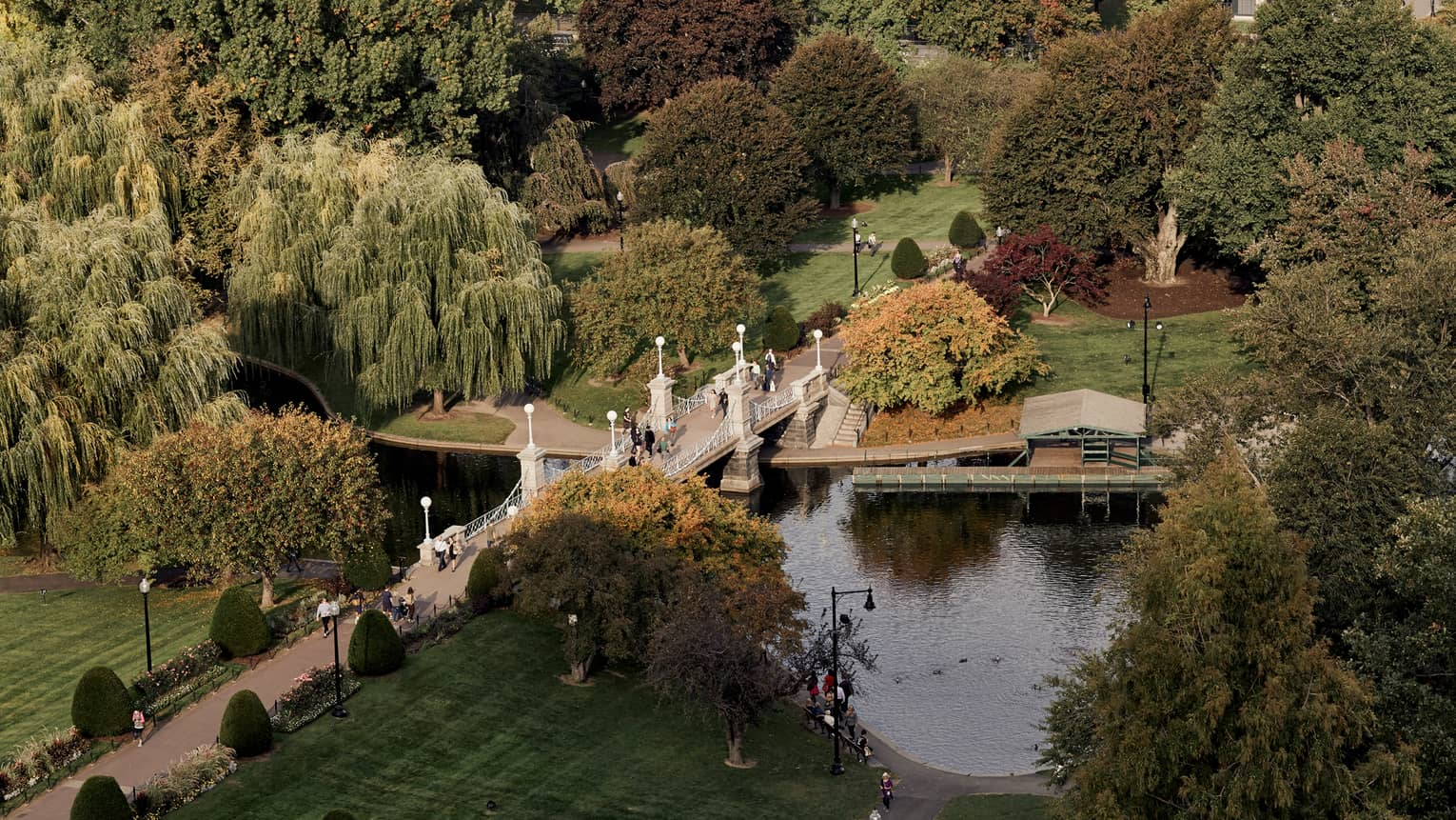 Aerial view of Boston Public Garden path and bridge over canal, large green trees