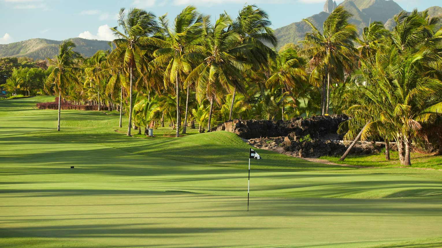 Flags on 10th hole of golf course with tropical palm trees lining green