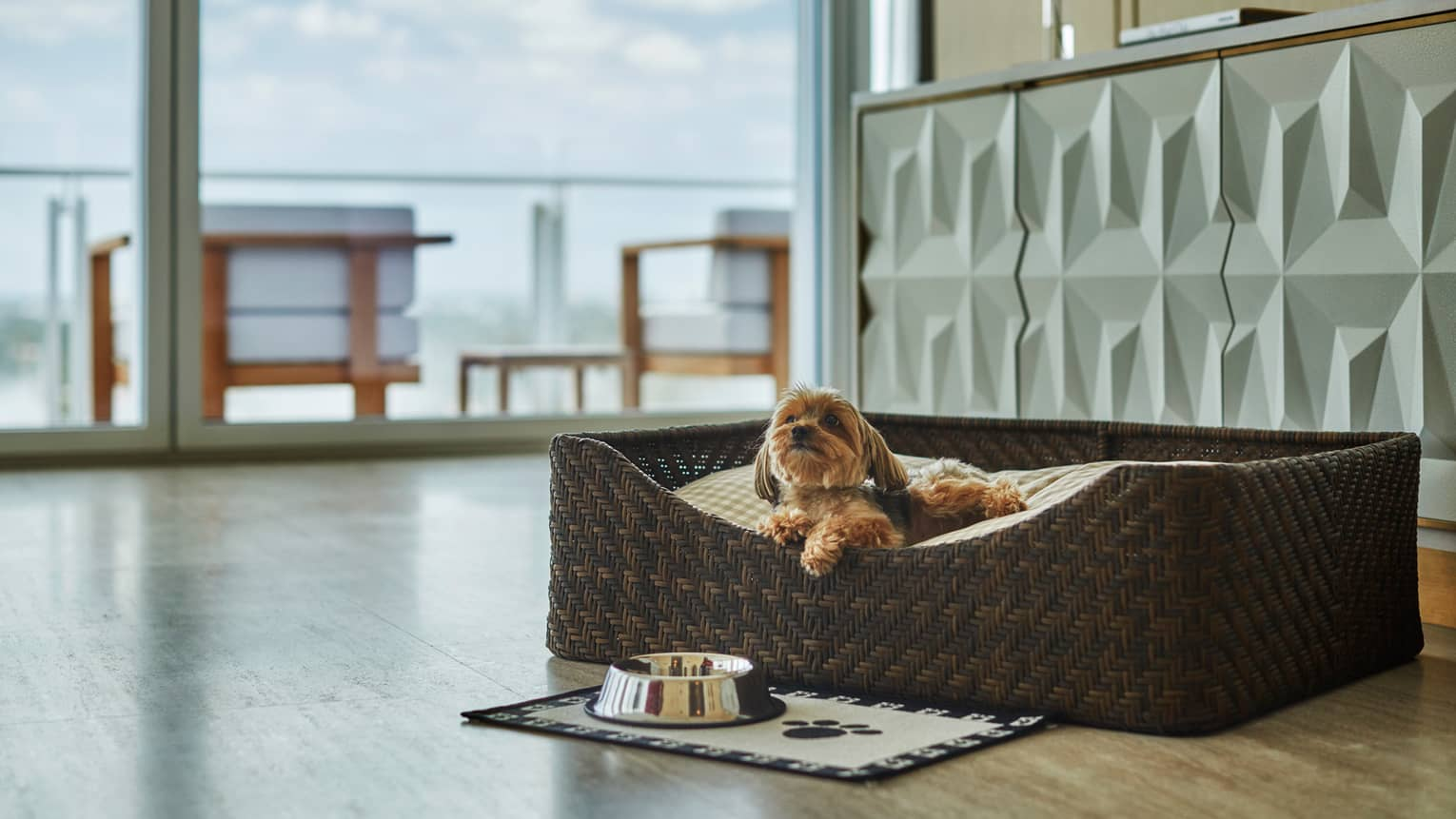Small dog lounges in basket in front of mat, bowl by glass balcony door