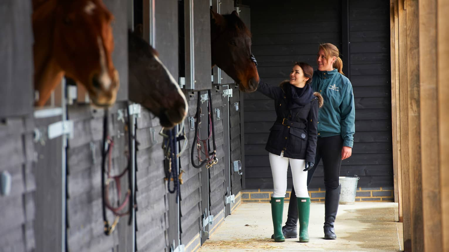 Two people visit with horses in stalls at The Dogmersfield Park Estate