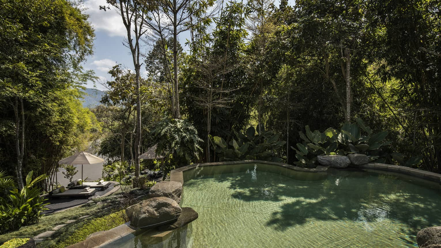 Large Riverside Pool outdoor by towering trees, large boulders