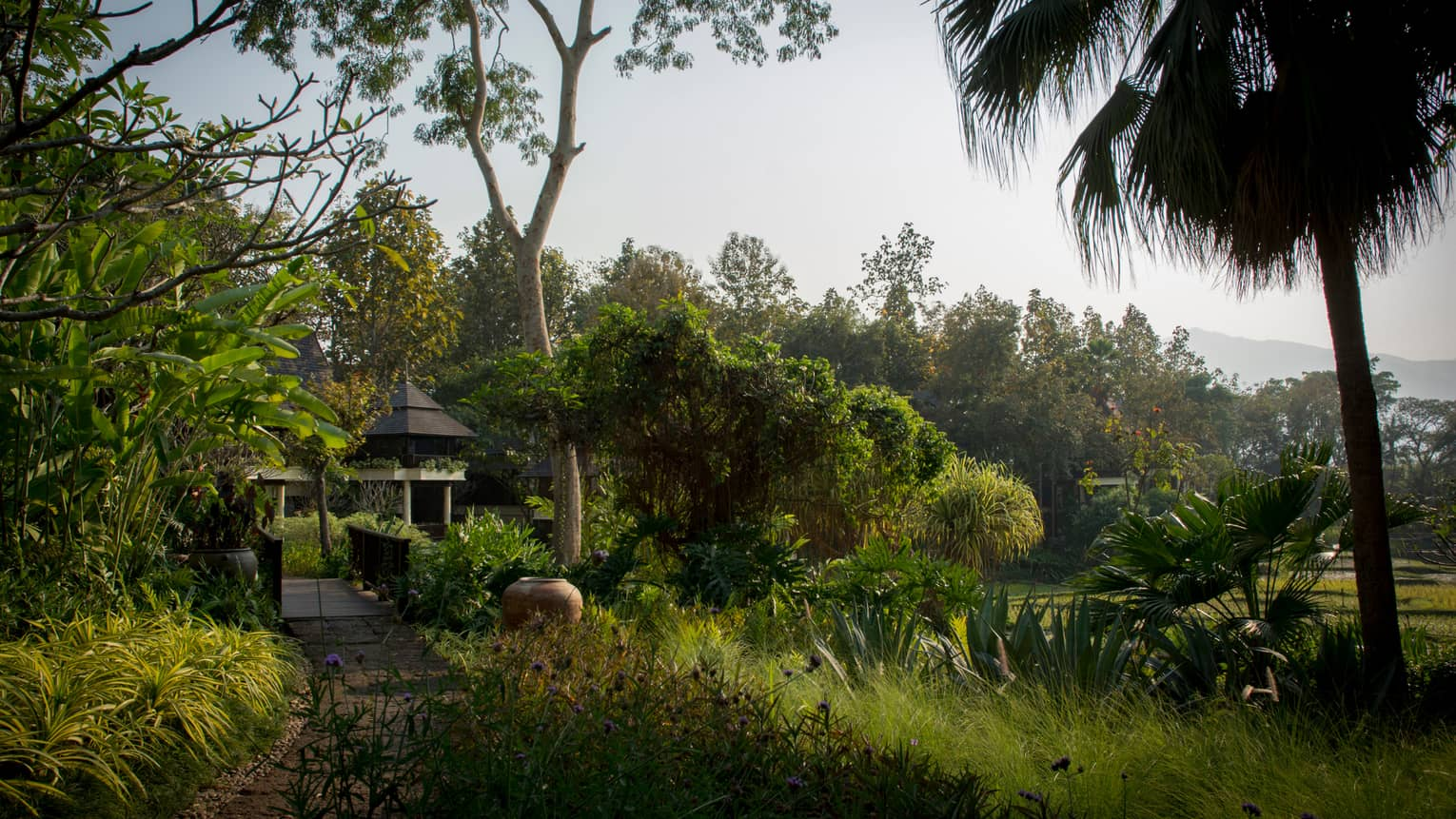 Building visible at end of pathway through tropical gardens, plantation, trees