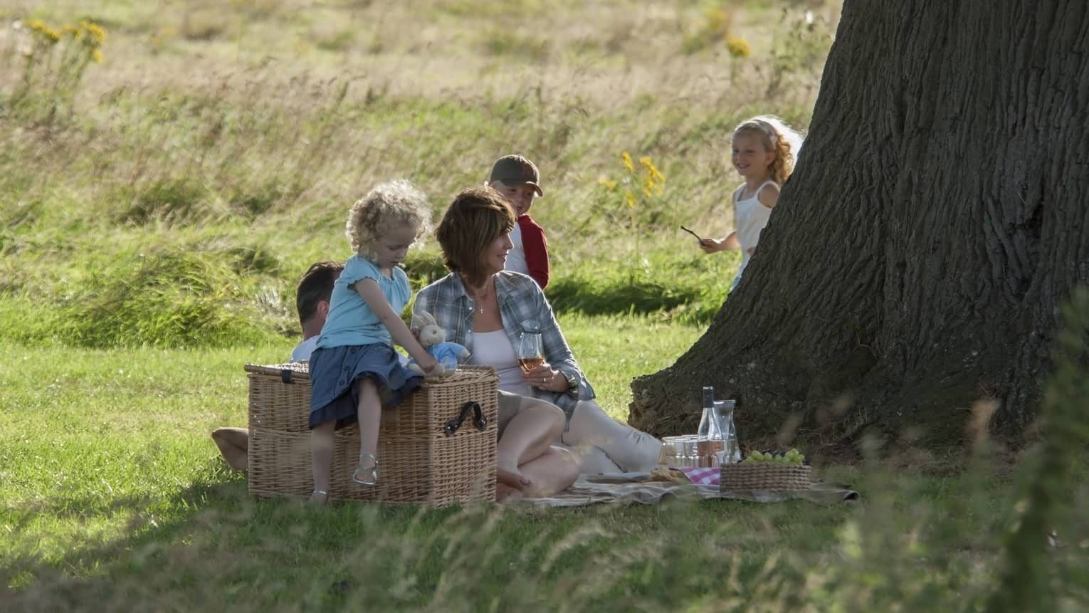 Family sits on grass under large tree at picnic, young girl sits on large wicker basket