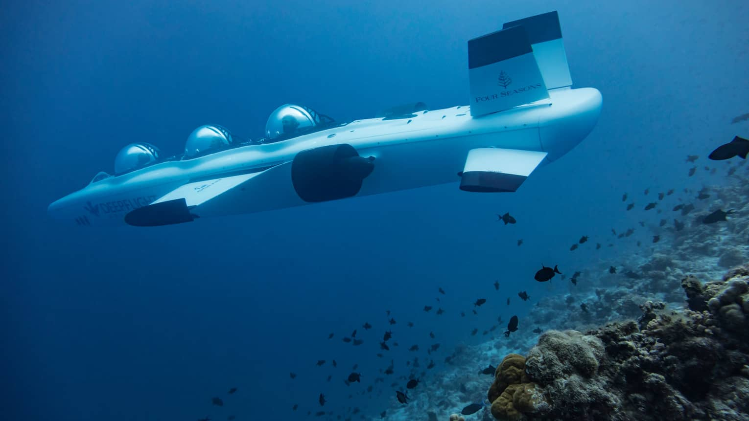 Large white DeepFlight Submarine vessel underwater in lagoon