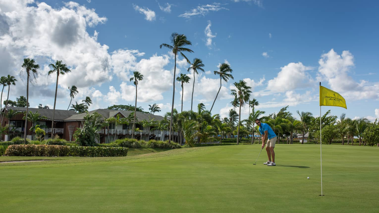 Golfer puts ball toward yellow flag on golf course green, tall palm trees