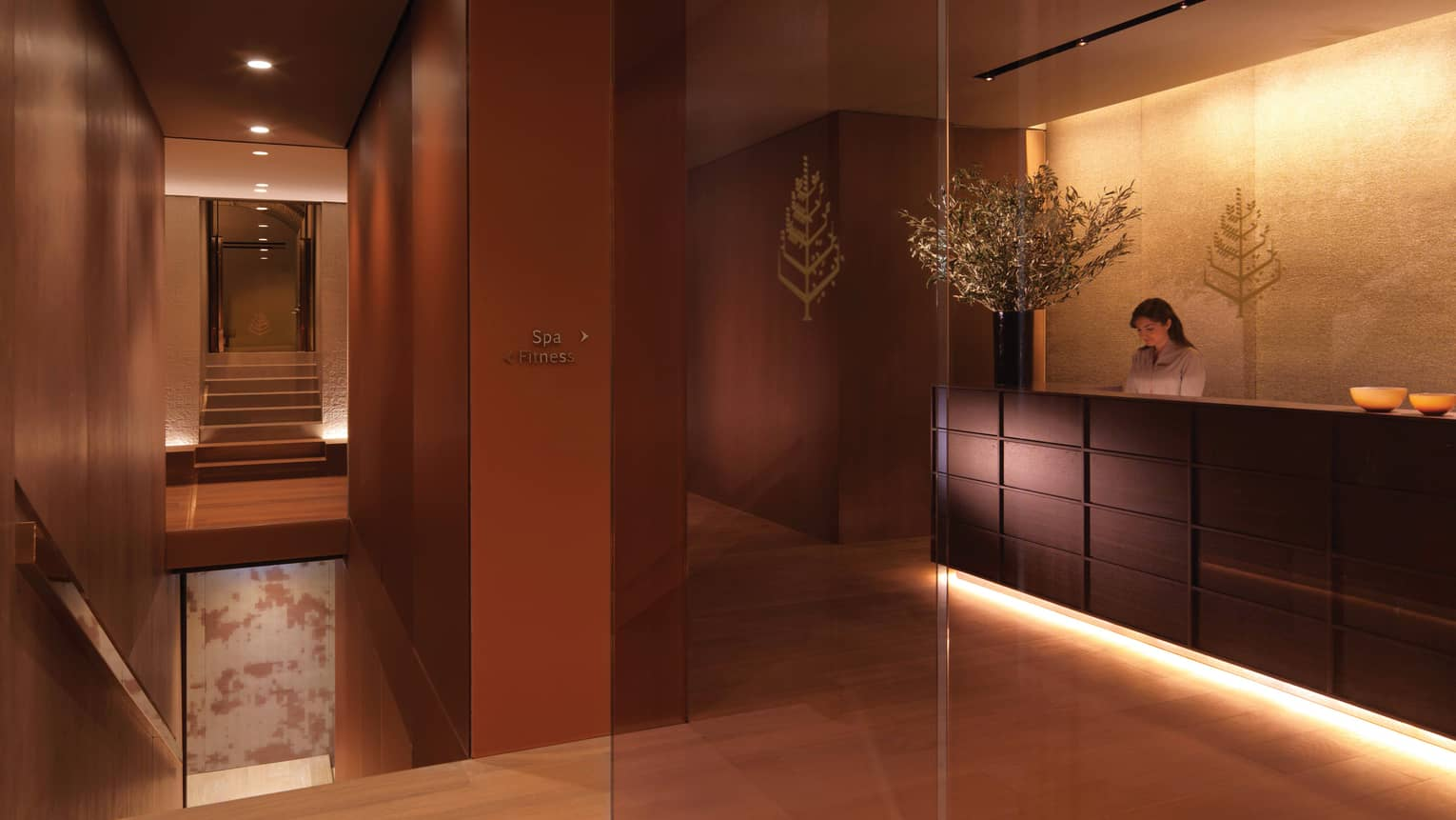 Dimly-lit spa reception area with dark wood panel walls, woman at desk