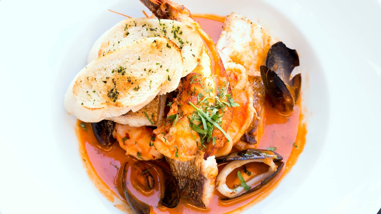 Cioppino seafood dish with shrimp, clams, mussels in red sauce, toasted baguette