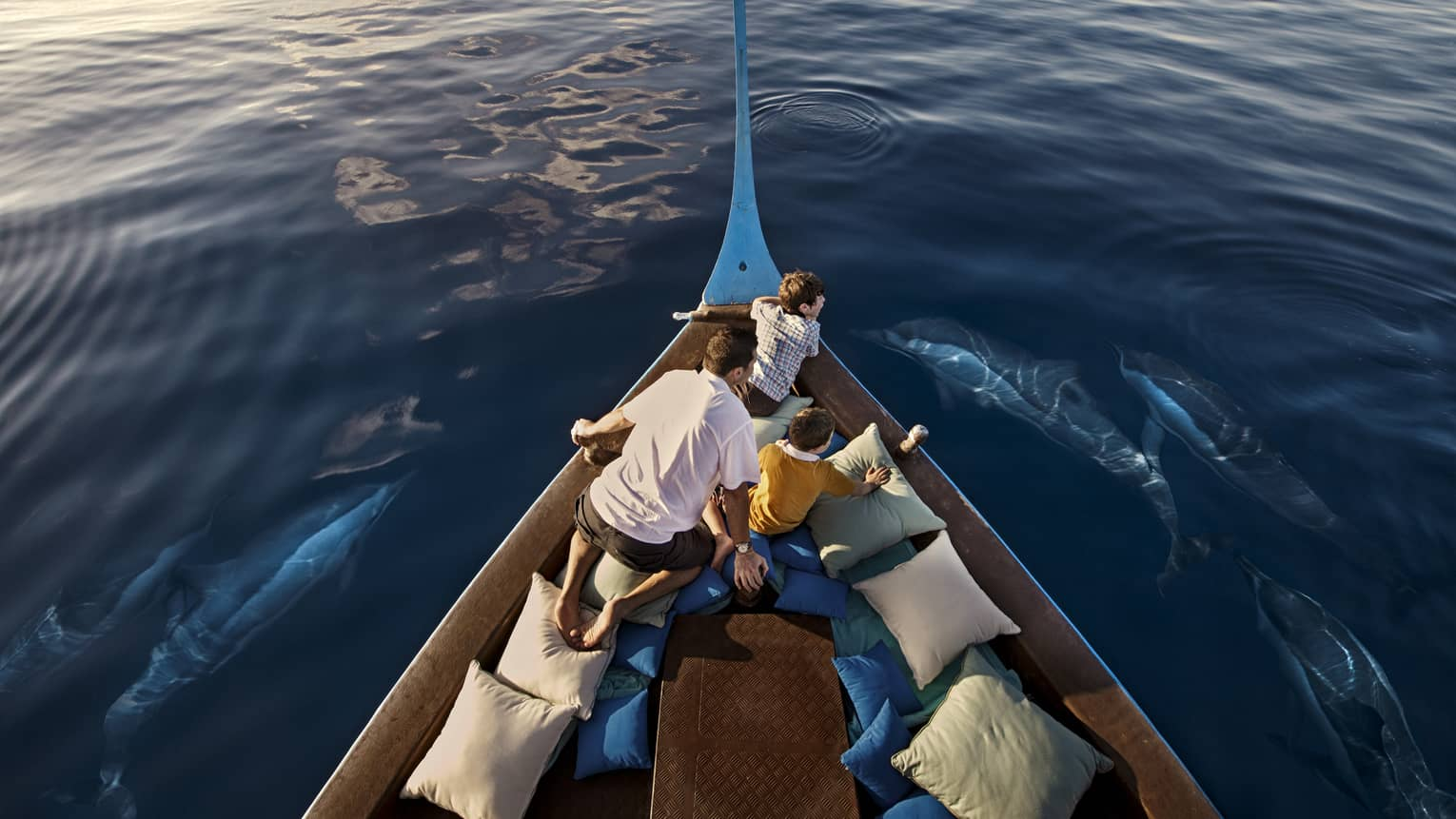 A man and two boys sit in a boat lined with blue and white pillows as dolphins swim around them