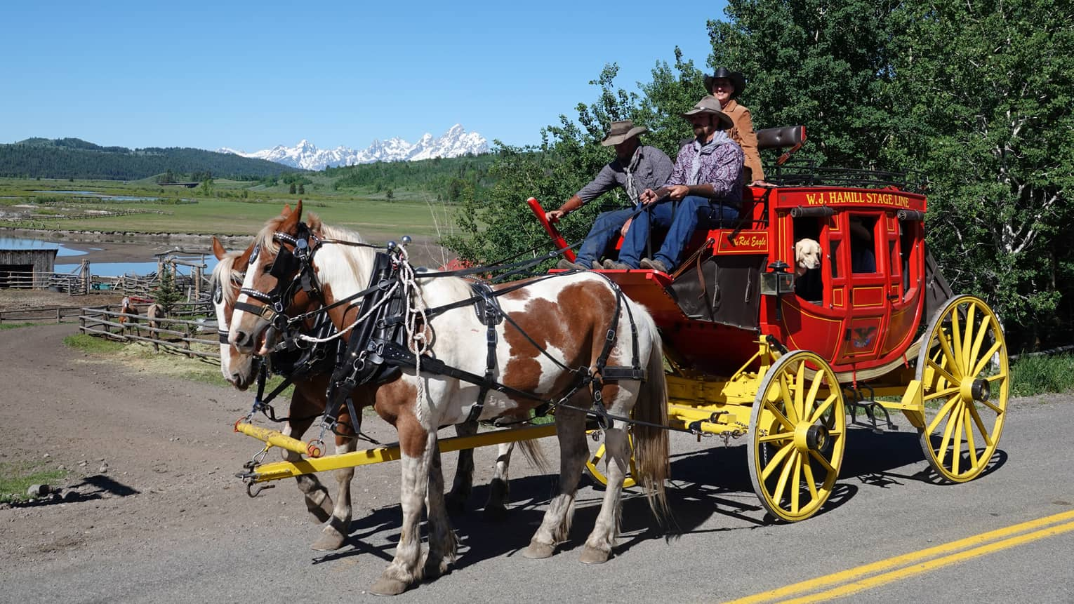 A red stagecoach with yellow wheels pulled by two chestnut-and-white draft horses