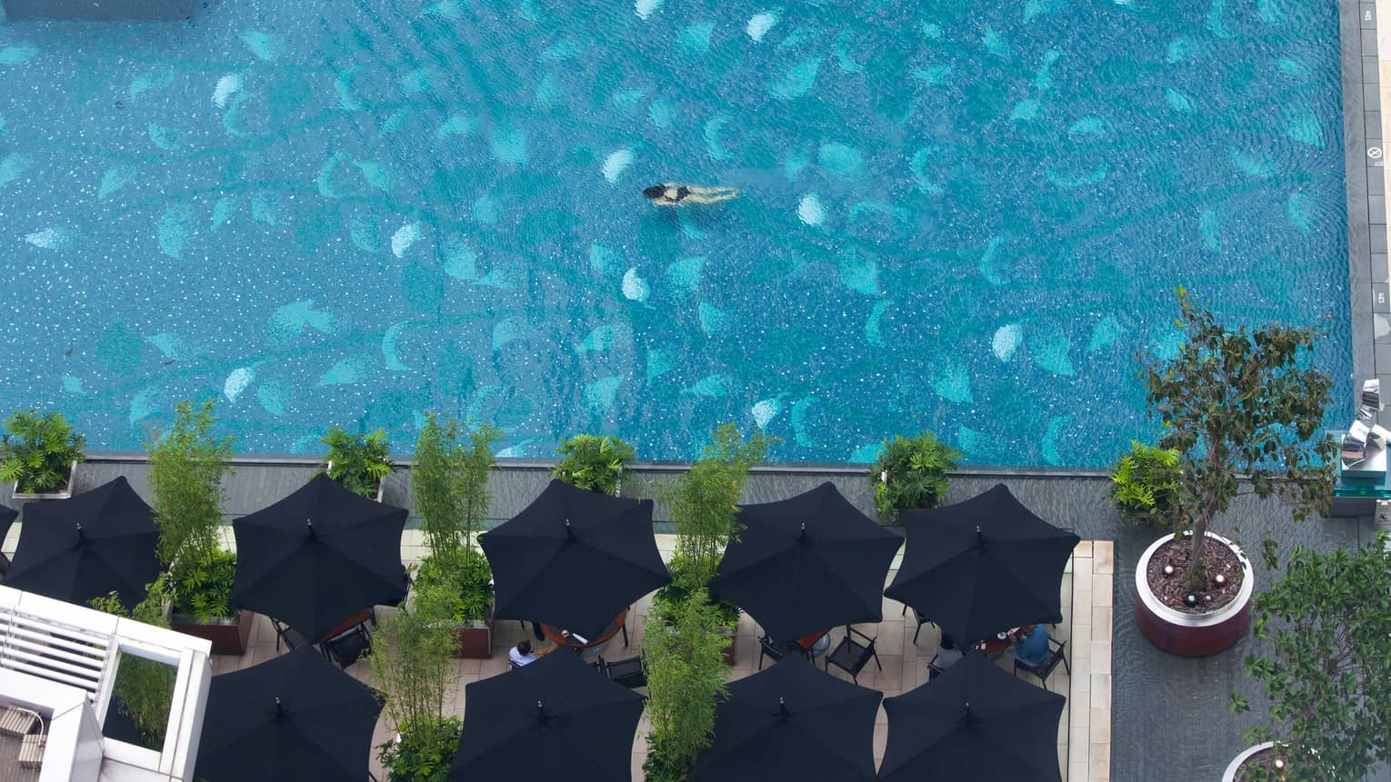 Aerial view of woman swimming underwater in large blue swimming pool, four black patio umbrellas on deck