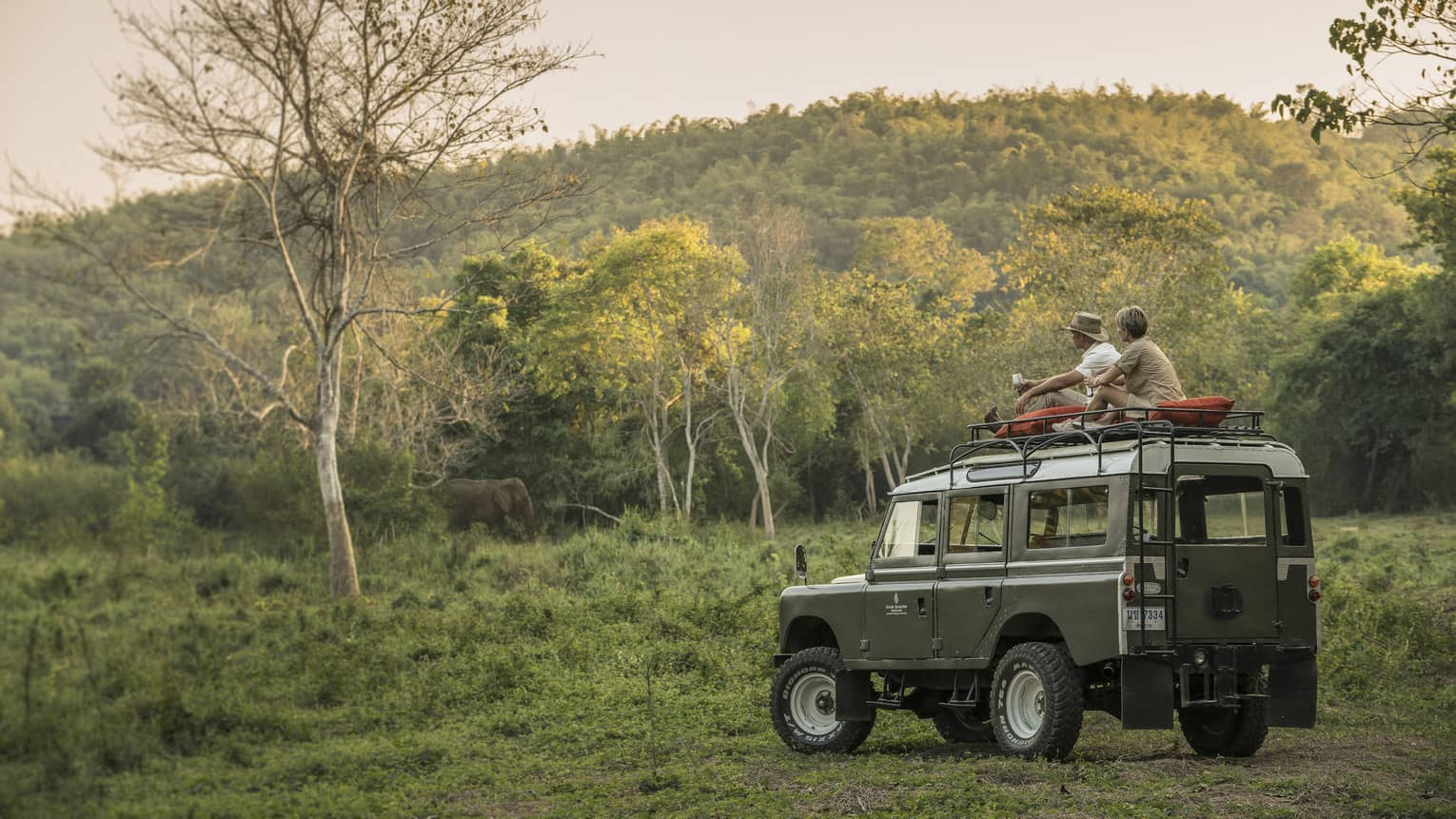 Couple in bush forest sit on top of utility vehicle