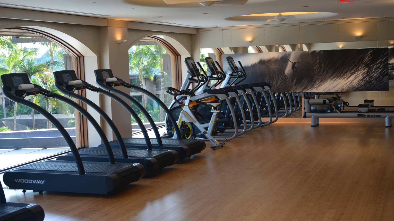 Fitness Centre treadmills, cardio bikes lined up against arched windows, large print with surfer on wave