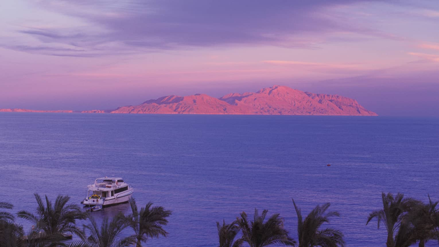 Looking down at palm trees, white yacht sailing on the Red Sea, pink mountains in distance