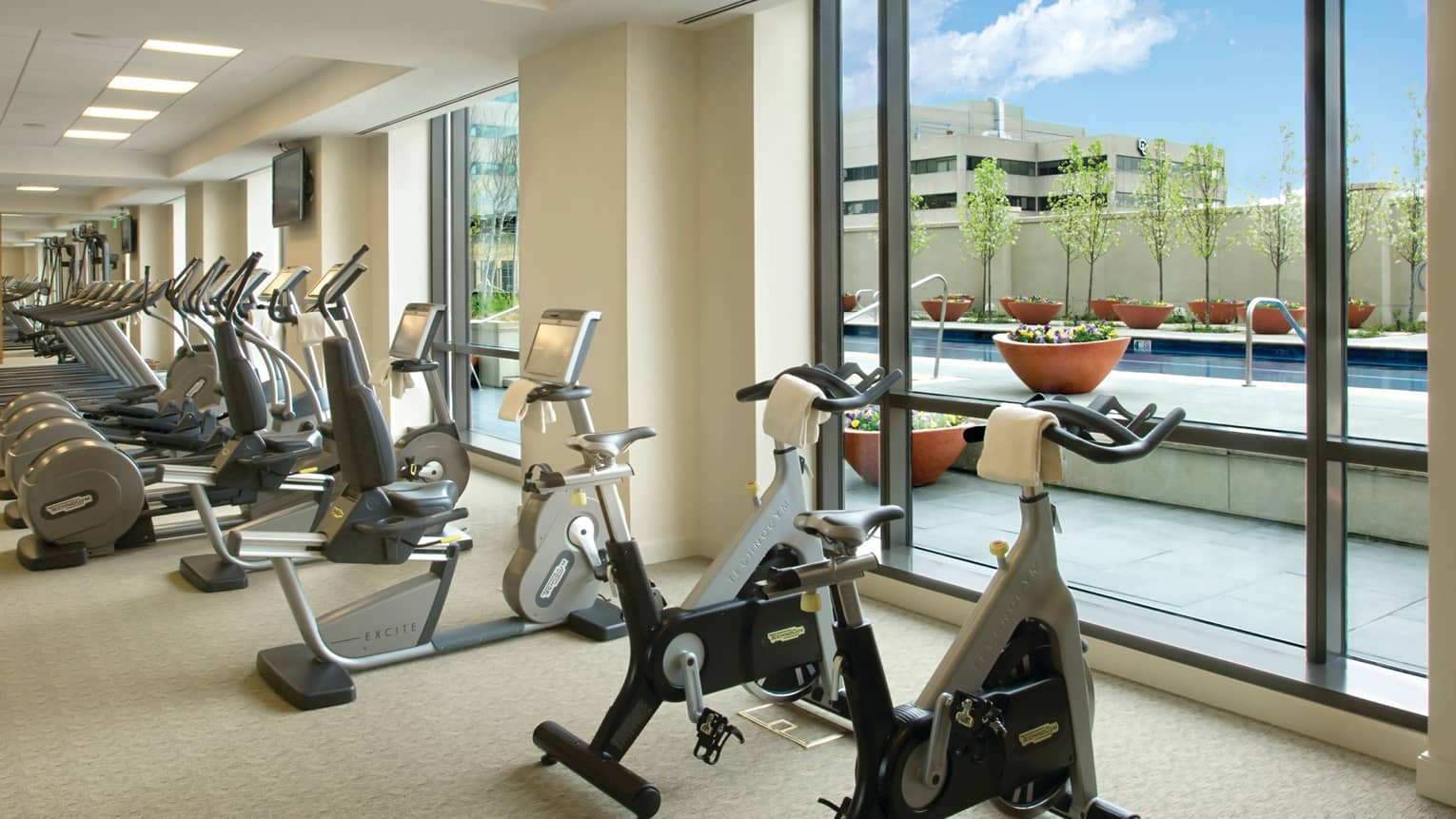 Fitness Centre cardio machines lined up against sunny floor-to-ceiling windows