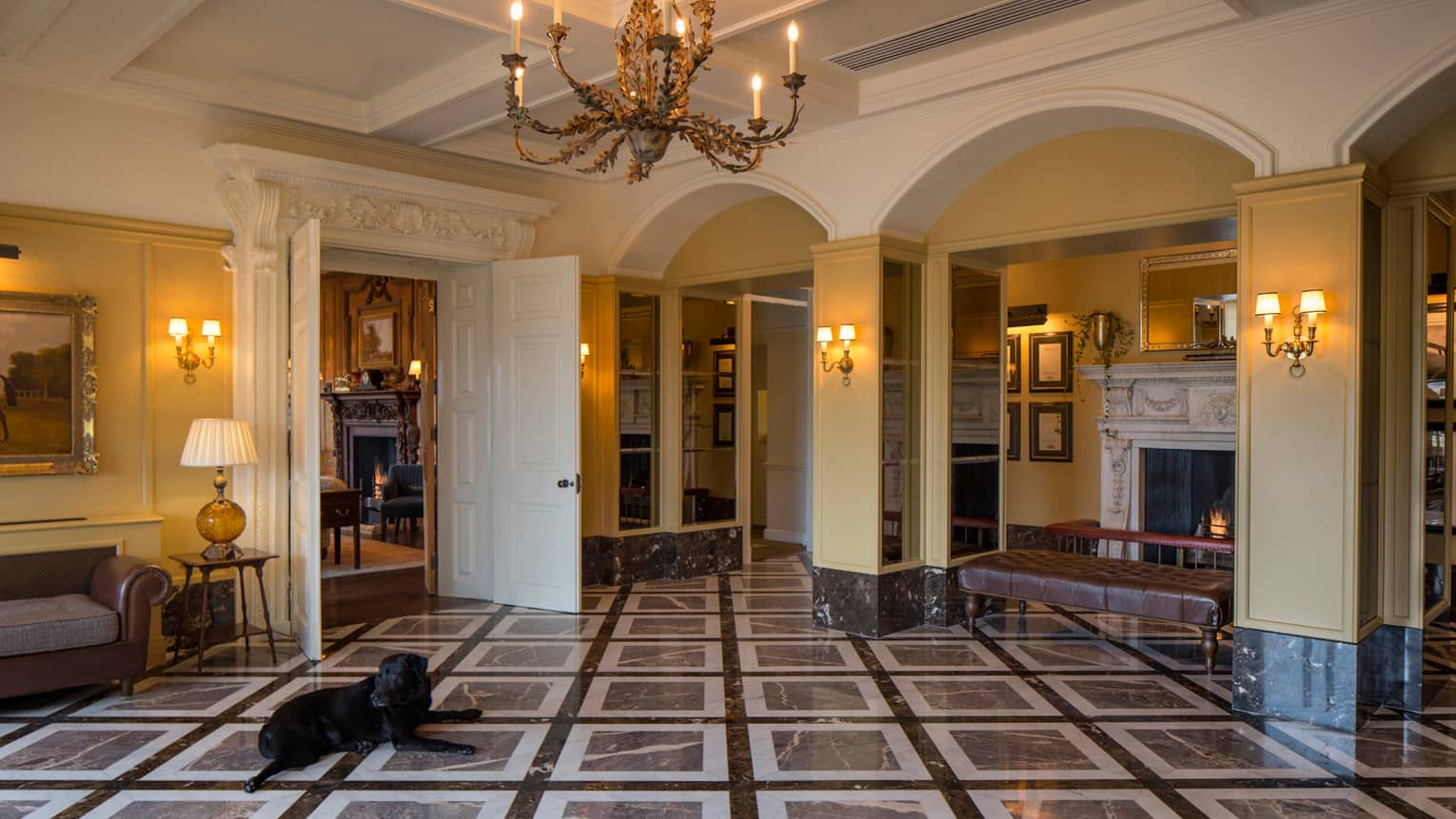 Black dog lies on marble floors in elegant hotel lobby with arched walls, brown benches