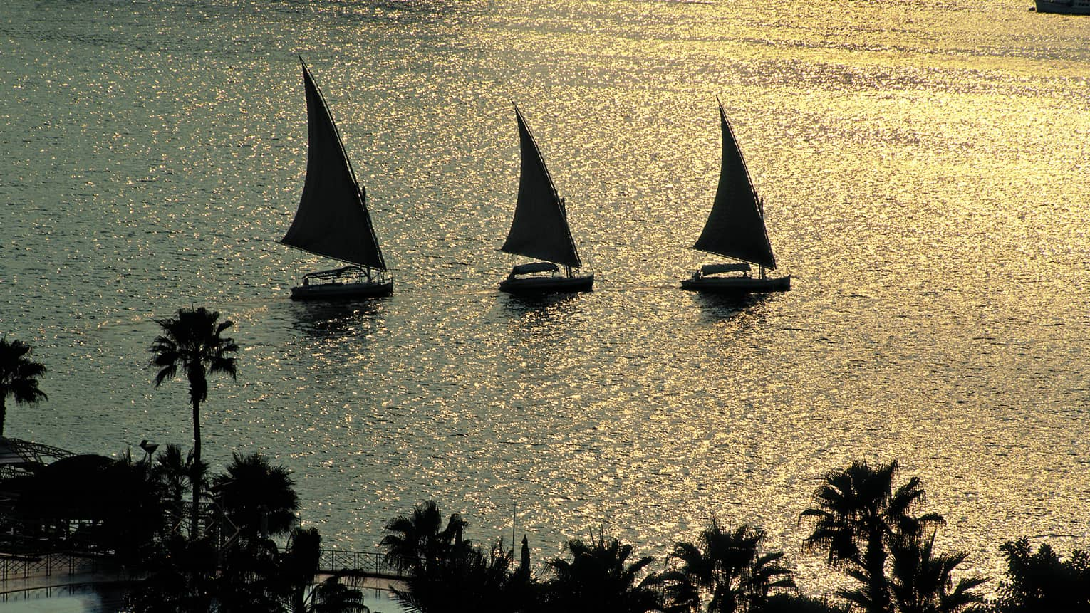 Silhouettes of three traditional felucca wooden sailboats on the Nile river at sunset