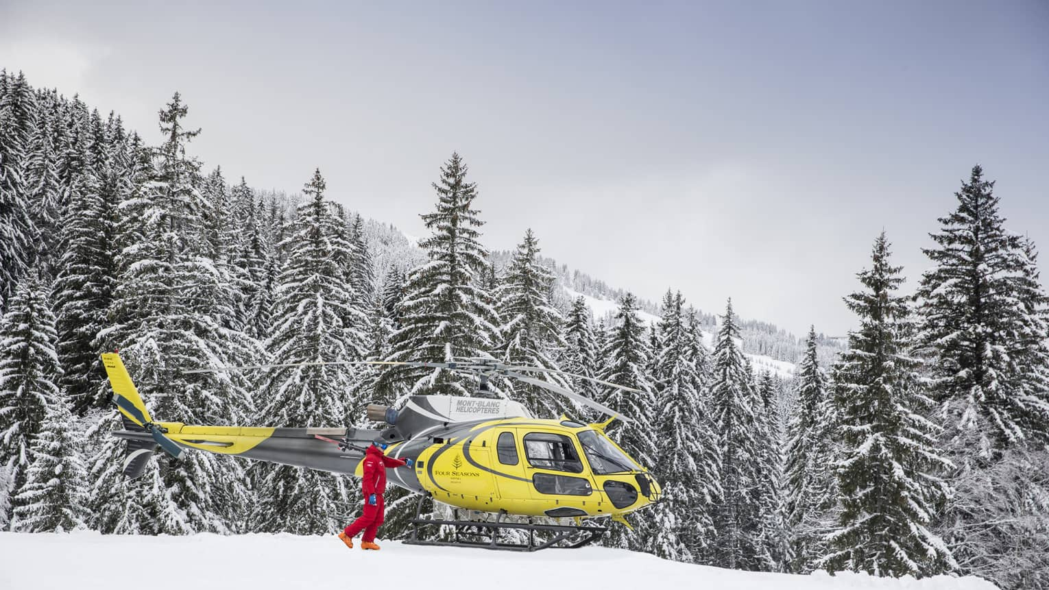 Skier dressed in red, holding skis, beside yellow helicopter atop snow-covered mountains and before a snow-covered evergreen forest