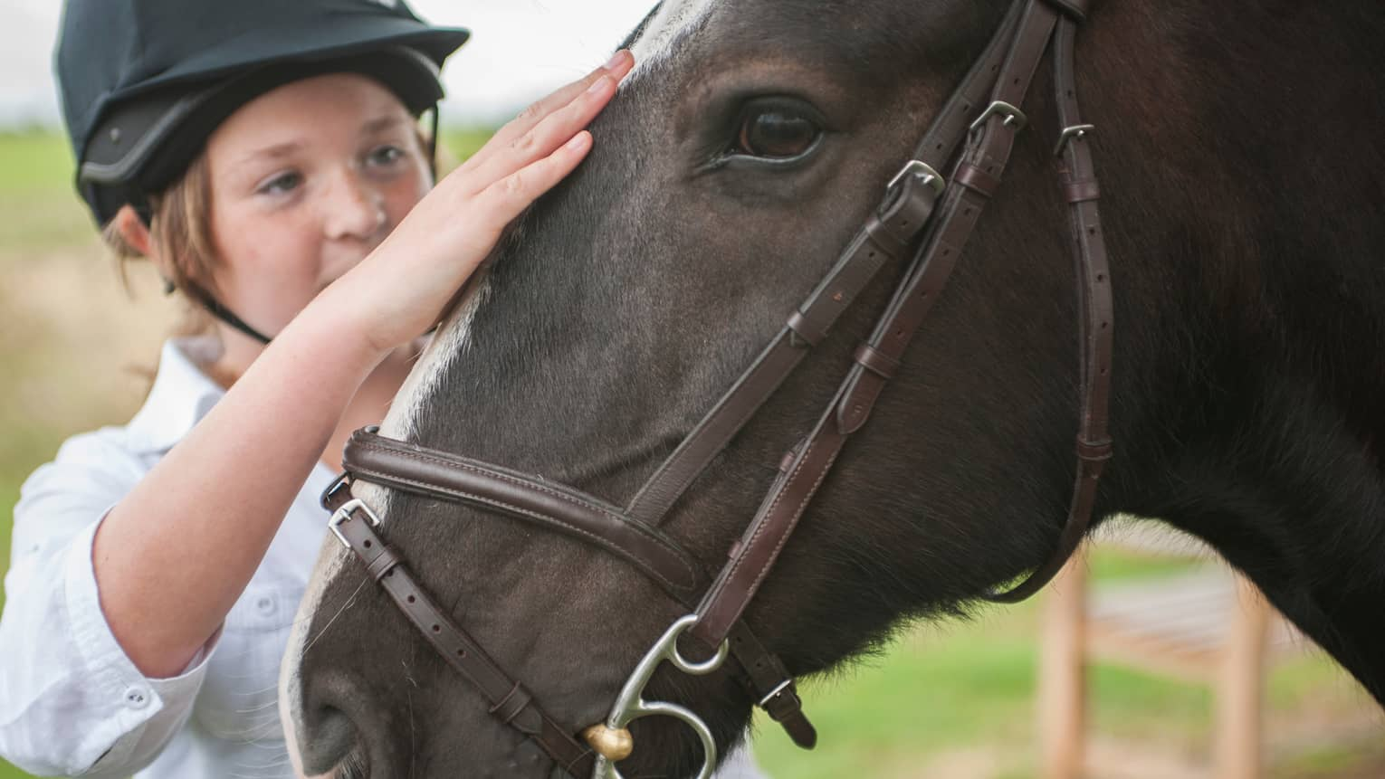 Close-up of child wearing equestrian helmet, petting horse