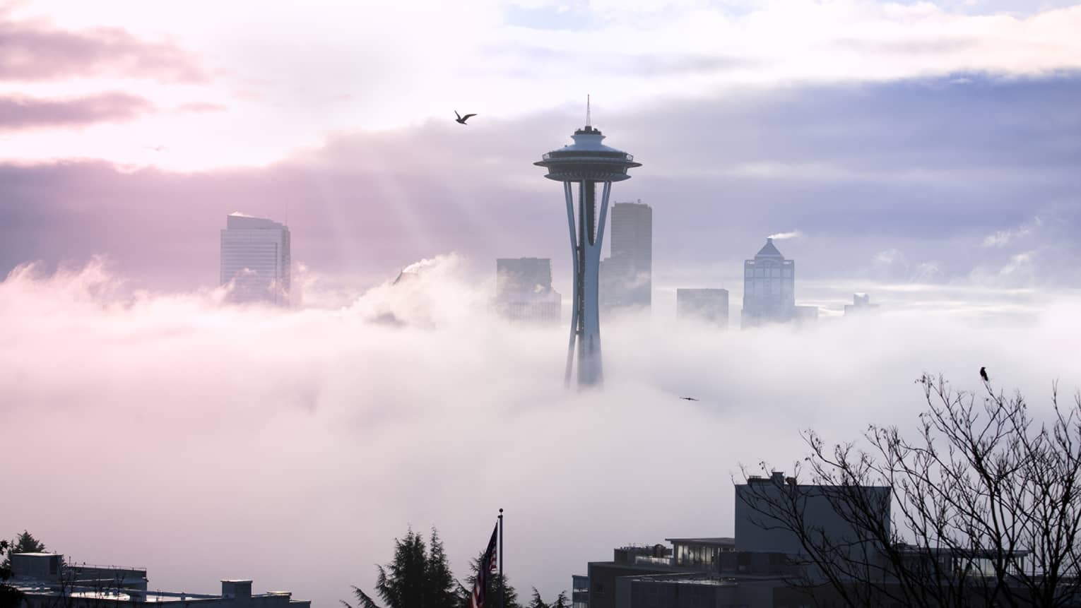 Seattle Space Needle emerging from white clouds, mist, silhouette of bird against sky