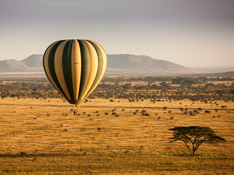See the Serengeti from unforgettable heights
